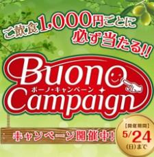ボーノ・キャンペーン