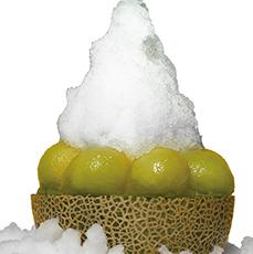黄金比蜜のかき氷 まるごとメロン