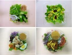 上段左から、夏のオクラの和サラダ、高原レタスと豆のサラダ。下段左から、ごろごろチキンのコブサラダ、スパイシーメキシカンサラダ