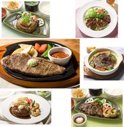 大葉おろしのビーフハンバーグ和膳(上段左)、柔らかビーフグリルとアボカドのサラダごはん(上段右)、サーロインの柔らかグリル(中央左)、彩り野菜の濃厚ビーフシチュードリア(中央右)、ビーフハンバーグ&天然海老のグリル(下段左)、柔らかビーフと天然海老のグリル和膳(下段右)