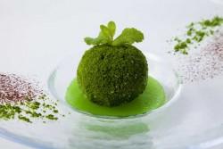 奥入瀬渓流を象徴する苔をモチーフにした「苔玉アイス」
