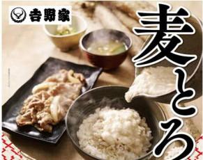 夏の新定番「麦とろ牛皿御膳」&「麦とろ鰻皿御膳」
