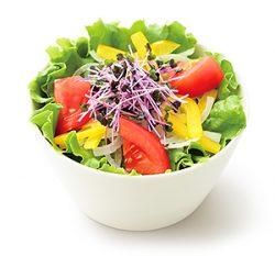 こだわり野菜のサラダL 和風ドレッシング
