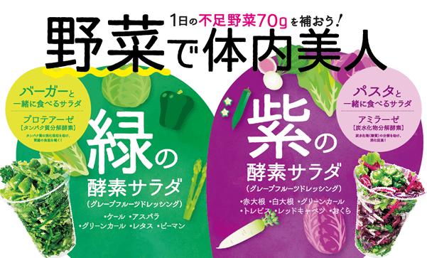 「緑の酵素サラダ」と「紫の酵素サラダ」