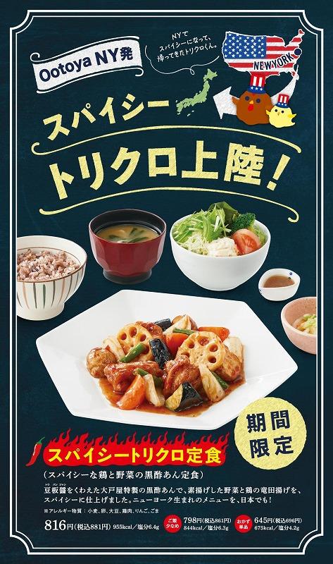 スパイシートリクロ定食